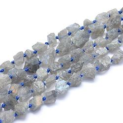 Chapelets de perles en labradorite naturelle , nuggets, 10~12x9~10mm, trou: 1mm; environ 34 pcs/chapelet, 16.5'' (42 cm)(G-G764-08)