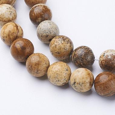 Natural Picture Jasper Beads Strands(G-L476-11)-2