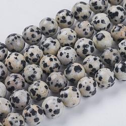 """Chapelets de perles en jaspe de dalmation naturelle, rond, 8mm, trou: 1mm; environ 24 pcs/chapelet, 7.6""""(X-G-G515-8mm-06)"""