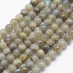 Natural Labradorite Beads Strands, Grade A-, Round, 8mm, Hole: 1mm; about 49pcs/strand, 15.3''(39cm)
