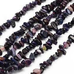 "Croustilles Sugilite naturelle brins de perles, 3~8x3~12x3~5mm, trou: 1 mm; environ 16""(G-N0164-28)"