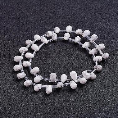 Natural Howlite Beads Strands(G-J360-02)-2