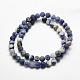 Natural Sodalite Beads Strands(X-G-J364-01-8mm)-2
