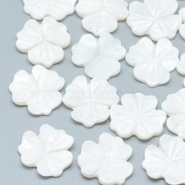 Freshwater Shell Cabochons, Flower, Seashell Color, 15x15.5x2~3mm(SHEL-S275-035)