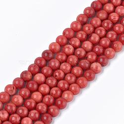 """Chapelets de perles en perles de corail en bambou de mer (imitation corail), teint, rond, firebrick, 6x5.5mm, trou: 0.6mm; environ 72 pcs/chapelet, 15.5""""(X-CORA-T009-32D-01)"""