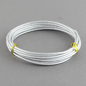 Textured Aluminum Craft Wire, for Jewelry Wrapping Craft & Floral Wire, Silver, 12 Gauge, 2mm, 5m/roll(16.4 Feet/roll)(AW-R004-5m-01)