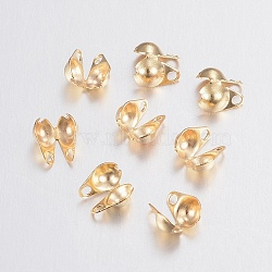 304 Stainless Steel Bead Tips, Calotte Ends, Clamshell Knot Cover, Golden, 6x4x3mm, Hole: 1mm, Inner Diameter: 3.5mm(X-STAS-H436-26)