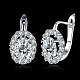 Brass Cubic Zirconia Hoop Earrings(EJEW-BB31666-B)-2