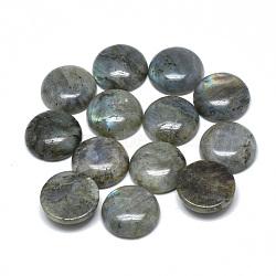Natural Labradorite Cabochons, Half Round, 8x4mm(X-G-T073-18-8mm)