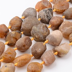 "Naturelles ambre brut perles agate brins, nuggets, 20~35x13~30x13~26mm, trou: 1mm; environ 13~14 pcs/chapelet, 15.9""~16.1""(G-D833-08)"