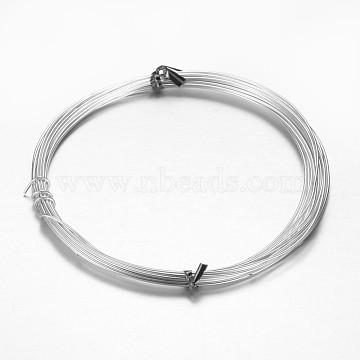 Aluminum Craft Wire, for Beading Jewelry Craft Making, Silver, 18 Gauge, 1mm, 10m/roll(32.8 Feet/roll)(AW-D009-1mm-10m-01)