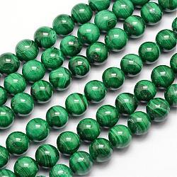 """Brins de perles naturelles de malachite, rond, 10mm, trou: 1mm; environ 40 pcs/chapelet, 15.7""""(G-O152-47-10mm)"""
