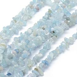 Chapelets de perles en aigue-marine naturelle, puce, 5~12x3~6mm, Trou: 0.6mm; Environ 33'' (84cm)(G-P406-05)
