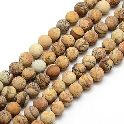 """Chapelets de perles rondes en jaspe mat avec image naturelle, 8mm, trou: 1mm; environ 47~49 pcs/chapelet, 14.9~15.6""""(G-M064-8mm-05)"""