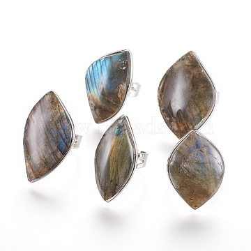 Adjustable Natural Labradorite Rings, with Brass Findings, Leaf, Size 8, 18.5mm(RJEW-P076-01)