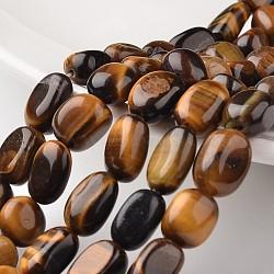 "Pépites tigre naturel brins de perles d'oeil, 11~15x10mm, trou: 1mm; environ 29 pcs/chapelet, 15.3""(G-M350-06)"