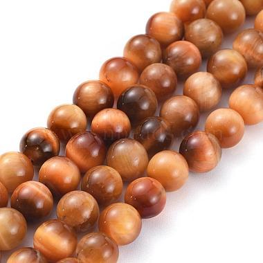 8mm Chocolate Round Tiger Eye Beads