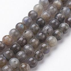 Natural Labradorite Bead Strands, Round, 8mm, Hole: 1mm; about 48pcs/strand, 15.3inches(390mm)