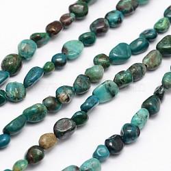 Pépites perles de chrysocolla naturelle brins, 5~8x5~8mm, trou: 1 mm; environ 15.5 pouces