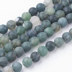 Chapelets de perles en agate mousse naturelle, rond, mat, 6~6.5mm, trou: 1mm; environ 60 pcs/chapelet, 14.9'' (38 cm)(G-G735-62F-6mm)