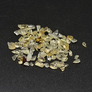 Natural Citrine Chip Beads, No Hole/Undrilled, 2~8x2~4mm; about 170pcs/10g(X-G-O103-09)