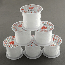 Nylon Wire, Clear, 1.0mm, about 5.46 yards(5m)/roll(X-NWIR-R011-1.0mm)