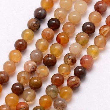 Natural Petrified Wood Bead Strands, Round, 3~3.5mm, Hole: 0.7mm; about 115~125pcs/strand, 16 inches(G-K146-42-3mm)