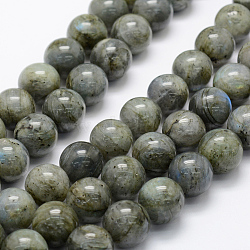 Natural Labradorite Beads Strands, Round, 16mm, Hole: 1mm; about 25pcs/strand, 15.3''(39cm)