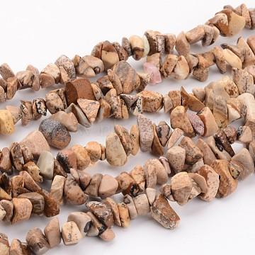 """Image naturelle puces de jaspe perles brins, 5~8mm, trou: environ 0.3 mm, 36"""" longtemps(X-F002)"""