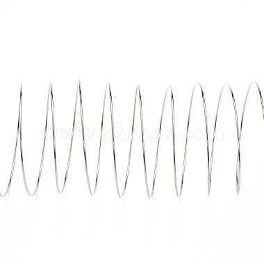 Steel Memory Wire(TWIR-ZX005-1.0mm-P-NF)-2