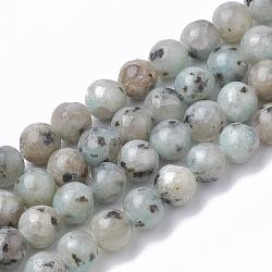 jaspe de sésame naturel / perles de jaspe kiwi, arrondir, 8 mm, trou: 1.5 mm; environ 50 perle / brin, 14.96(X-G-S295-14-8mm)