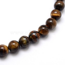Natural Grade AB Tiger Eye Round Beads Strands, 10mm, Hole: 1mm; about 39pcs/strand, 15inches