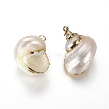 Golden Seashell Shell Spiral Shell Pendants