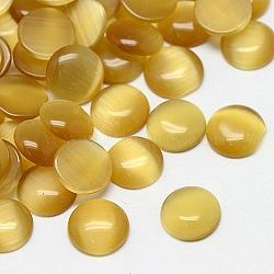 кабошоны кошачьего глаза, полукруглый, золотарник, 7x2.5 mm(CE-J002-7mm-14)