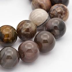 """Bois pétrifié naturel perles rondes brins, 8mm, trou: 1mm; environ 50 pcs/chapelet, 15.7""""(G-P101-01-8mm)"""