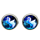 Picture Glass Stud Earrings(EJEW-O088-62)-1