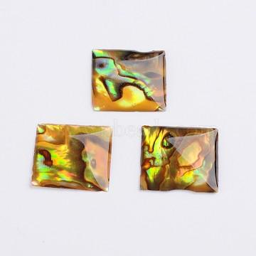 Square Abalone Shell/Paua Shell Cabochons, Colorful, 15x15x2mm(X-SSHEL-K003-15X15MM)