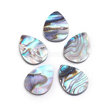 Natural Abalone Shell/Paua Shell Cabochons, Teardrop, 18x13x2mm(X-SSHEL-L017-002)