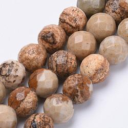 """Chapelets de perles en jaspe avec images naturelles, facette, rond, 8mm, trou: 1.2mm; environ 45 pcs/chapelet, 15.3""""(G-S281-01-8mm)"""