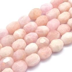 """Chapelets de perles en morganite naturelle, ovale, facette, 15~19x11~13mm, trou: 1mm; environ 24 pcs/chapelet, 15.1"""" (38.5 cm)(G-O170-23)"""
