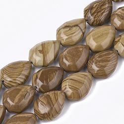 """Chapelets de perles en jaspe avec images naturelles, facette, goutte , 20~21x15~15.5x7~9mm, trou: 1mm; environ 19 pcs/chapelet, 14.9""""(G-T118-51)"""