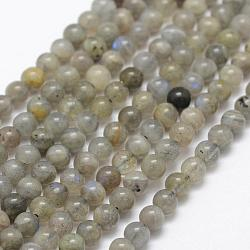 Natural Labradorite Beads Strands, Round, 4mm, Hole: 1mm; about 107pcs/strand, 15.1''(38.5cm)
