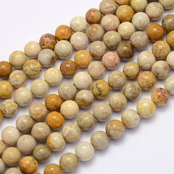 Natural Fossil Coral Beads Strands, Round, 4mm, Hole: 1mm, about 90pcs/strand, 15.7 inches(40cm)(X-G-G697-F01-4mm)