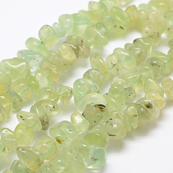 """Chapelets de perles en préhnite naturelle, nuggets, 7~15x5~8.5mm, Trou: 1mm; Environ 15.3"""" (39cm)(G-P406-37)"""