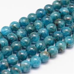 Apatite naturelle chapelets de perles, rond, 6mm, trou: 0.8~1mm; environ 66 pcs/chapelet, 15.7''(G-P204-09-6mm)