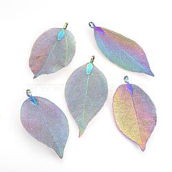 Gros pendentifs de feuille naturelle galvanisés, avec les accessoires en fer, multi-couleur plaquée, 50~80x20~35x1mm, Trou: 3x6mm(X-IFIN-Q119-03L)