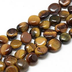 naturelles oeil de tigre brins de perles, nuggets, 8~12x8~10x4~9 mm, trou: 1 mm; environ 44 perle / brin, 16.3(G-S264-01)