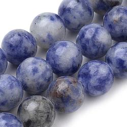 """Brins naturels de perles de sodalite du Brésil, rond, 8mm, trou: 1mm; environ 50 pcs/chapelet, 15.7""""(X-G-S259-36-8mm)"""