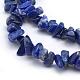 Natural Lapis Lazuli Beads Strands(X-G-P332-50)-2
